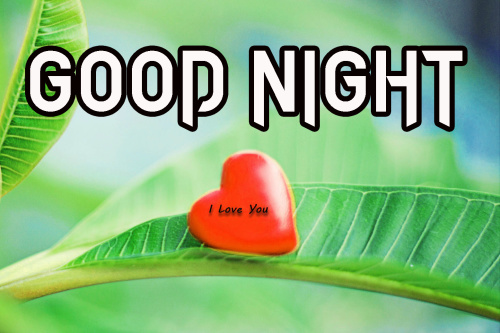 GOOD NIGHT WISHES IMAGES PHOTO PICTURES FREE HD