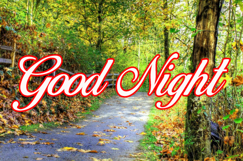 GOOD NIGHT WISHES IMAGES PICS PHOTO DOWNLOAD