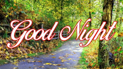 GOOD NIGHT WISHES IMAGES PHOTO WALLPAPER FOR WHATSAPP
