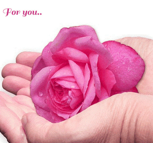 HEART TOUCHING IMAGES FOR WHATSAPP DP PROFILE IMAGES PHOTO FOR WHATSAPP