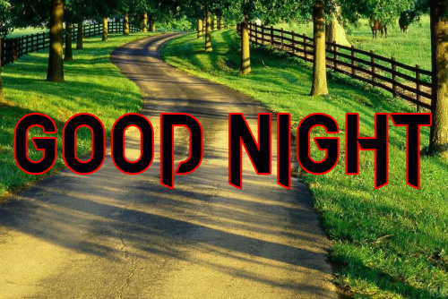 LATEST AMAZING GOOD NIGHT IMAGES PHOTO PICS DOWNLOAD