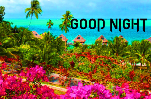 LATEST AMAZING GOOD NIGHT IMAGES PHOTO WALLPAPER FREE HD