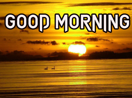 LATEST GOOD MORNING IMAGES WALLPAPER PHOTO HD DOWNLOAD