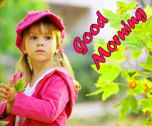 ALL NEW GOOD MORNING IMAGES WALLPAPER PHOTO FREE HD