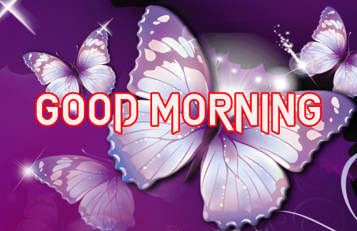 LATEST GOOD MORNING IMAGES PICTURES PICS HD DOWNLOAD