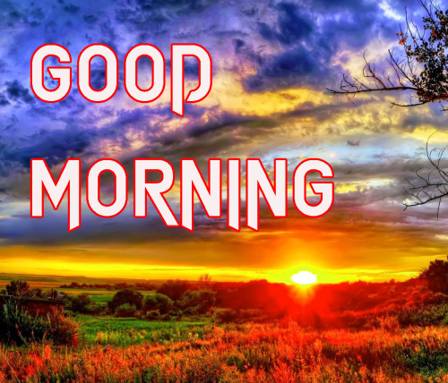 LATEST GOOD MORNING IMAGES PICTURES PICS FREE DOWNLOAD