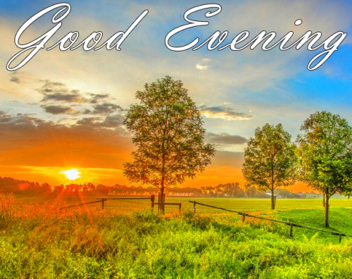 LATEST NEW GOOD EVENING IMAGES PHOTO DOWNLOAD