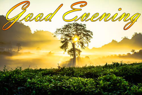 LATEST NEW GOOD EVENING IMAGES PHOTO WALLPAPER HD DOWNLOAD