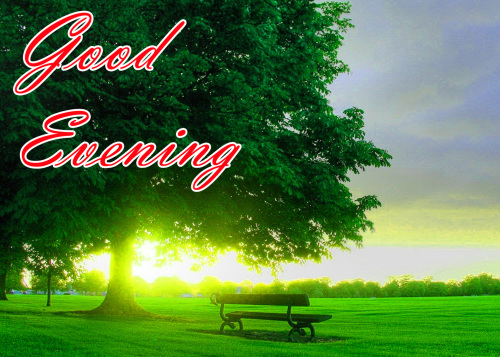 LATEST NEW GOOD EVENING IMAGES PICTURES FREE DOWNLOAD