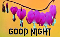 Top 100+ New Good Night / Gd Night flower Nature Art Wallpaper Images