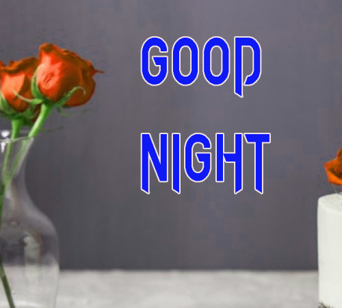 NEW GOOD NIGHT / GD NIGHT FLOWER NATURE ART IMAGES PICS DOWNLOAD FOR GIRLFRIEND