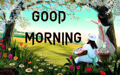 NEW GOOD MORNING IMAGES HD 1080P PICS PHOTO DOWNLOAD