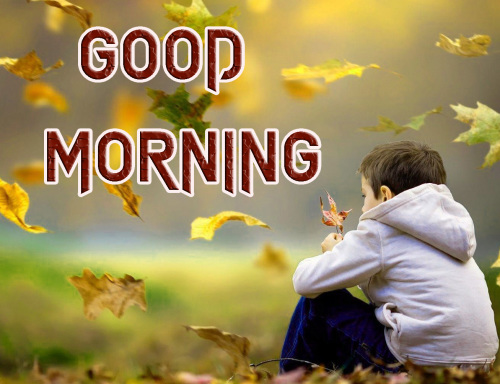 NEW GOOD MORNING IMAGES WALLPAPER PHOTO FREE HD DOWNLOAD