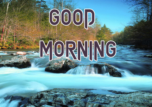 NEW GOOD MORNING IMAGES PHOTO PICTURES HD