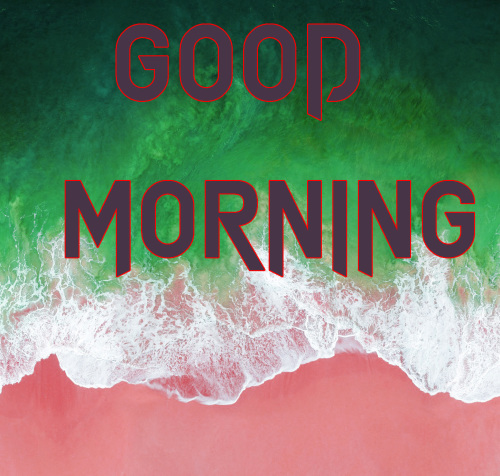 NEW GOOD MORNING IMAGES PHOTO WALLPAPER FREE HD DOWNLOAD