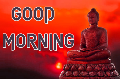 NEW GOOD MORNING IMAGES PICTURES WALLPAPER HD DOWNLOAD