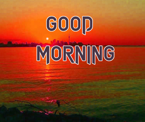 NEW GOOD MORNING IMAGES WALLPAPER PICTURES FREE HD