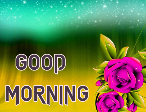 NEW GOOD MORNING IMAGES PICTURES PHOTO DOWNLOAD