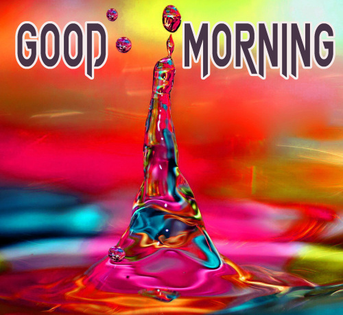 NEW GOOD MORNING IMAGES PICTURES PHOTO HD