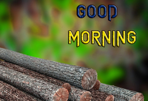 ROMANTIC GOOD MORNING IMAGES FOR GF & BF WALLPAPER PICTURES FREE HD