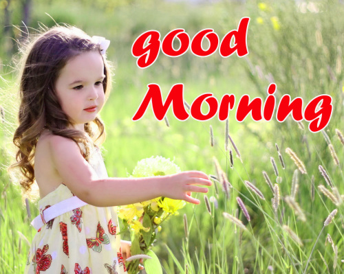 TODAY GOOD MORNING IMAGES PICS PICTURES FREE HD