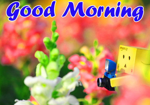 VERY CUTE GOOD MORNING IMAGES PHOTO WALLPAPER FOR FACEBOOK