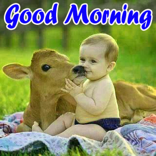 VERY CUTE GOOD MORNING IMAGES PHOTO WALLPAPER DOWNLOAD