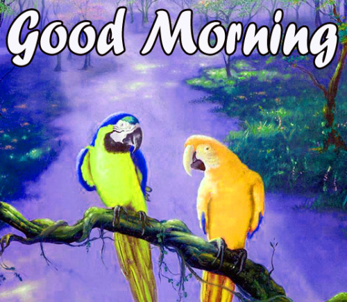 VERY SWEET GOOD MORNING IMAGES  PICTURES WALLPAPER DOWNLOAD