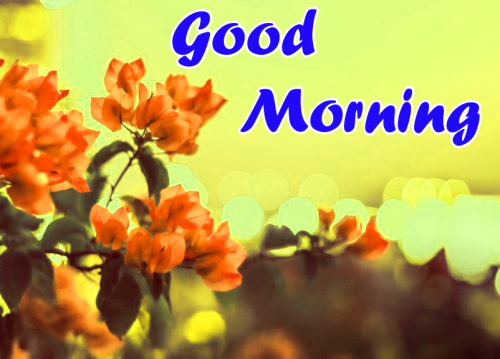 VERY SWEET GOOD MORNING IMAGES WALLPAPER PHOTO HD