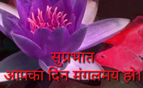 SUPRABHAT IMAGES PICTURE DOWNLOAD
