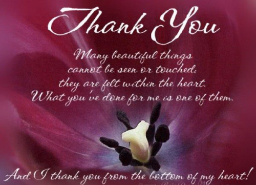 Appreciation Thank You Quotes Images (19)