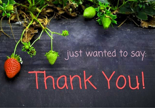 Appreciation Thank You Quotes Images (75)