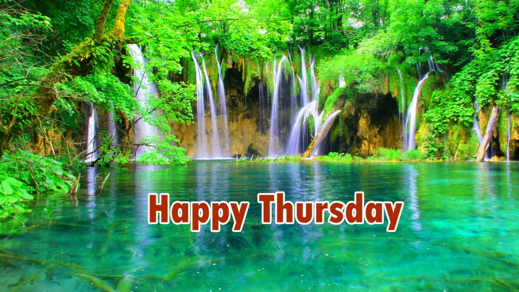 Good Morning Thursday Pics Wallpaper Photo Pics HD Free Download
