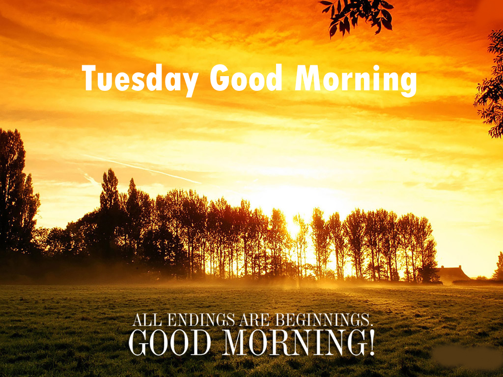 Tuesday-happy-mornign-pictu