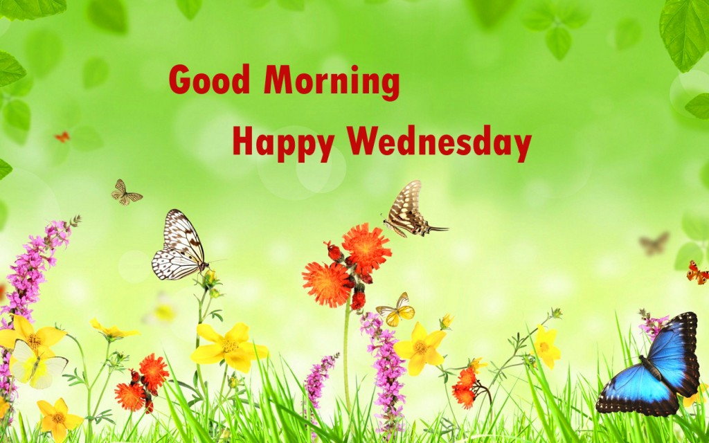 goodmornign-wednesday-image