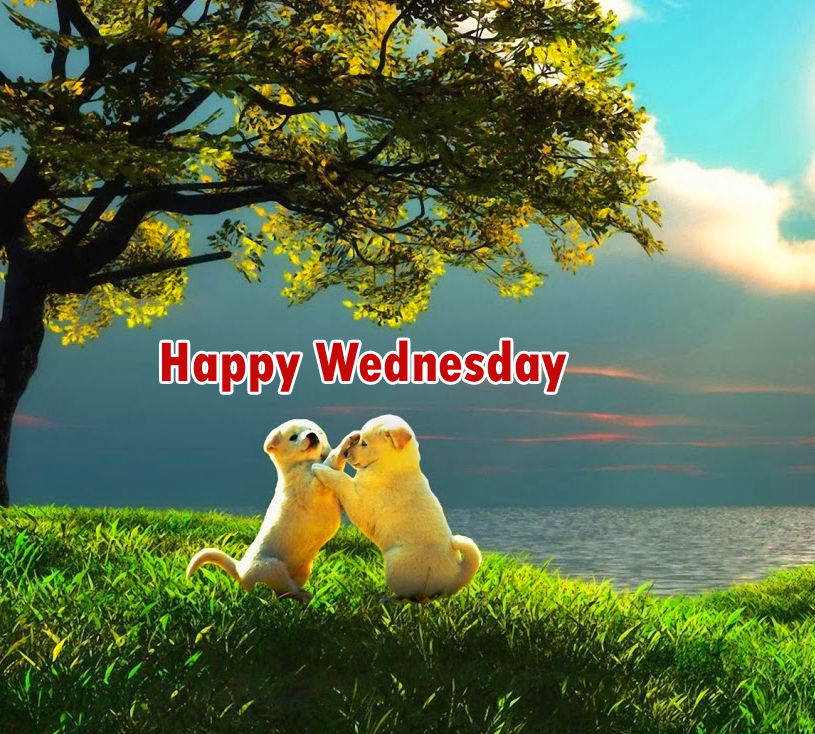 wednesday-images-good-morni