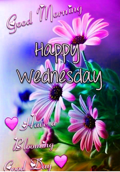 Good Morning Wednesday Images HD Download