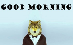 Funny Good Morning Pictures Images Photo Free Download