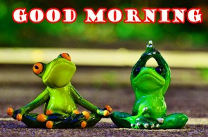 Funny Good Morning Wallpaper Pictures Free Download