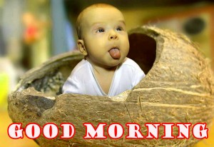 Funny Good Morning Wallpaper Photo Images Free Download