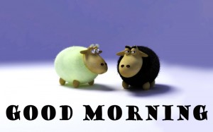 Funny Good Morning Pictures Images Photo HD Download