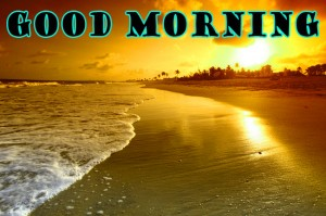Good Morning Photo Wallpaper Pictures HD Download