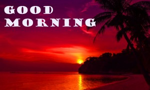 Good Morning Pictures Wallpaper Pics Free HD