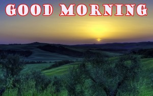 Good Morning Pictures Wallpaper Pics Photo Wallpaper Download