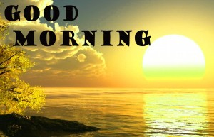Good Morning Photo Wallpaper Pictures Free Download