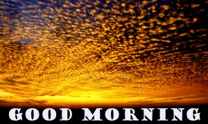 Good Morning Pictures Images Photo Wallpaper Download