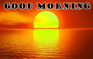 Good Morning Photo Pictures Images HD Download