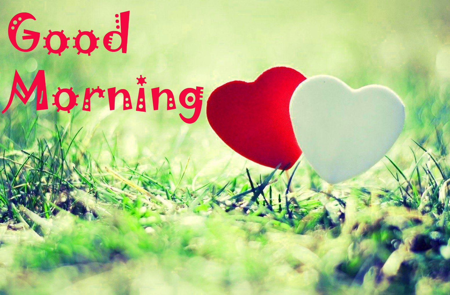 Good Morning Images Wallpaper Photo Pics Download for Lover