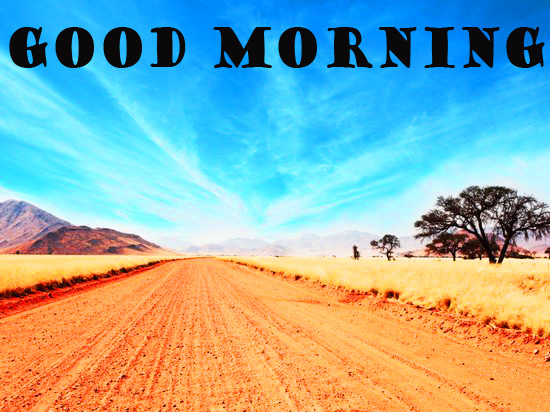 Good Morning Nature Wallpaper Photo pictures Pics HD Download