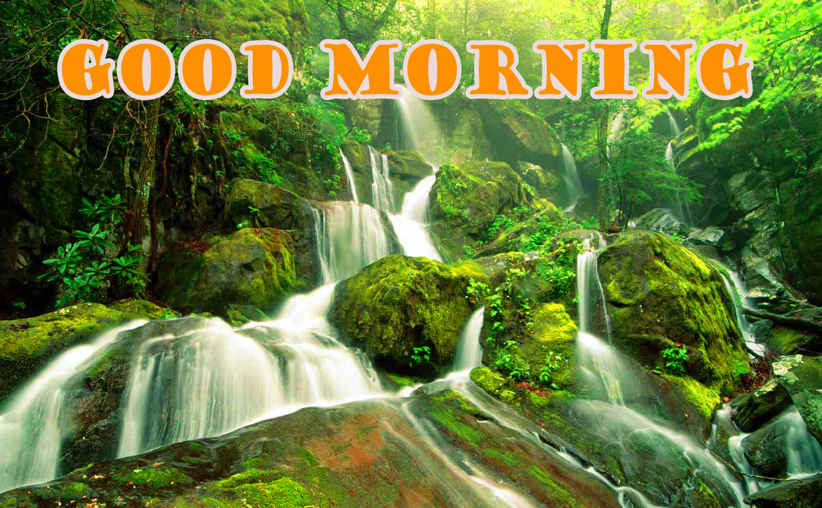 Good Morning Nature Photo Images Pictures Download